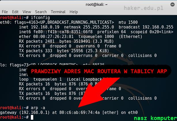 Adres IP i tablica ARP w Kali Linux
